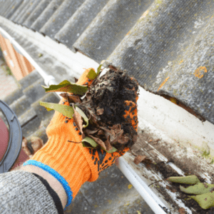 An excellent fall pest prevention tip is to clean out your gutters so you can avoid a mosquito infestation in the spring here in Lancaster, PA.