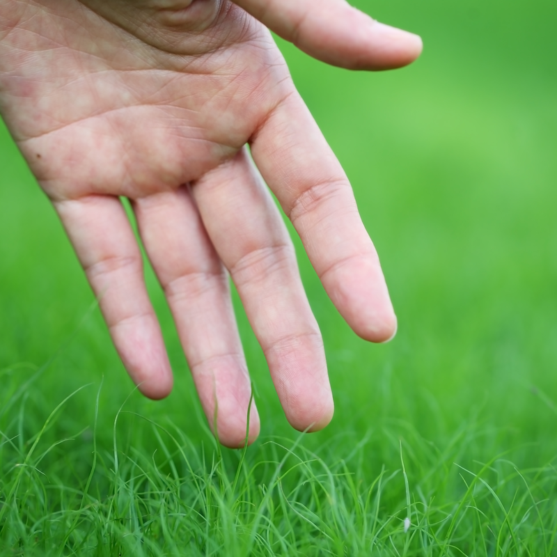 Proper Mowing and Maintenance for Pennsylvania Lawns This Spring