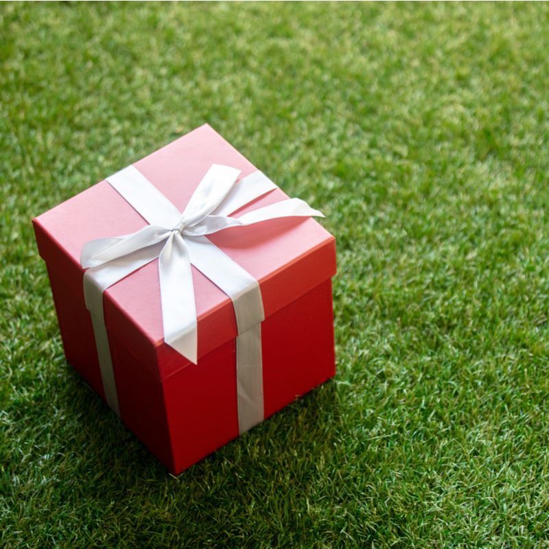 Give Someone You Love the Gift of a Green, A Healthy Lawn