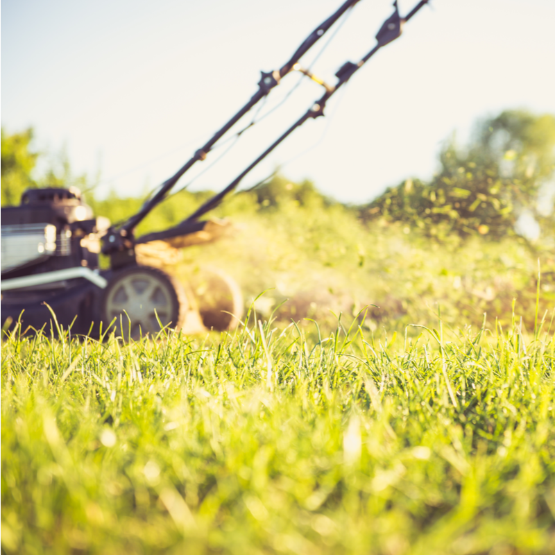 Prepare Your PA Lawn for Spring With a Lawn Care Program
