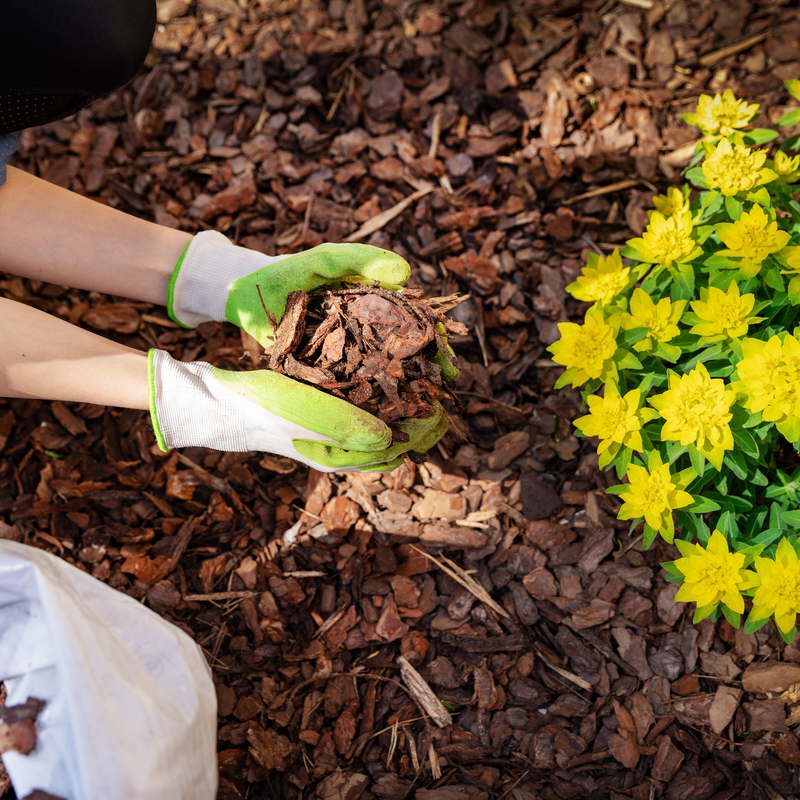 Liven Up Your PA Landscape With the Added Protection of Mulch